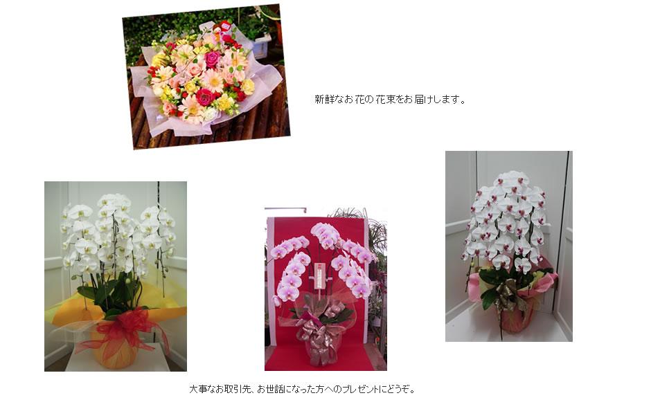 花束・お祝い花・アレンジ花